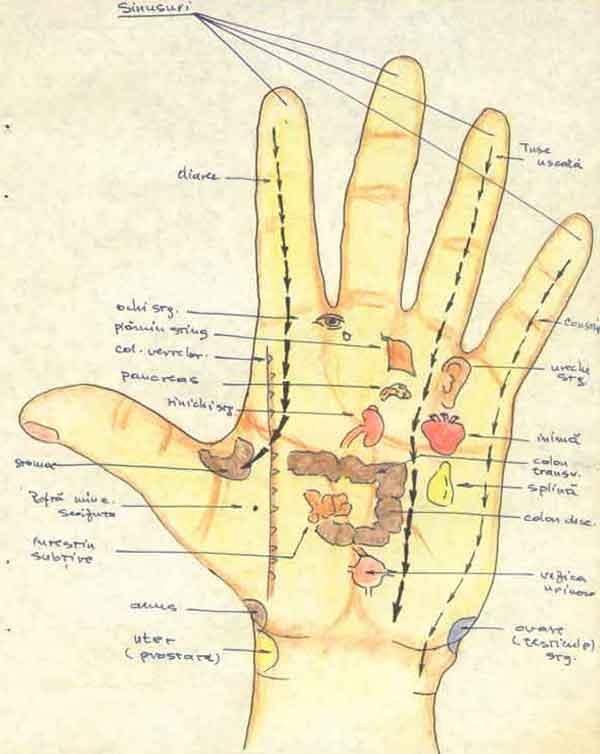 zonele de masaj ale mainii