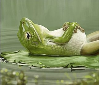 relaxing-frogs2