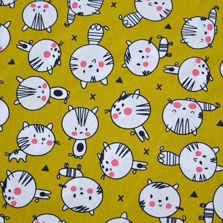 Pisici pe mustar